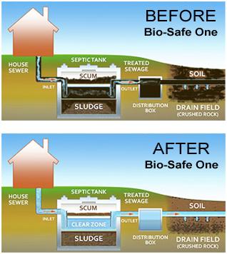 men xử lý bể phốt BioFriendly Septic